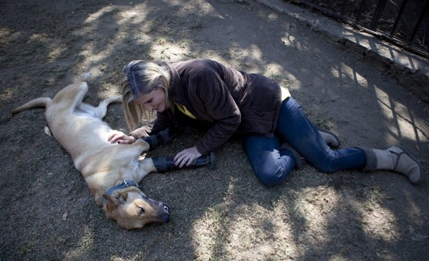 http://www.washingtonpost.com/blogs/worldviews/wp/2013/01/12/mexicos-drug-traffickers-practice-torture-techniques-on-dogs/